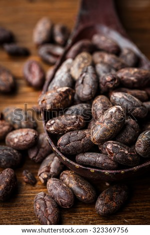 Cacao raw peeled beans on a wooden spoon - stock photo