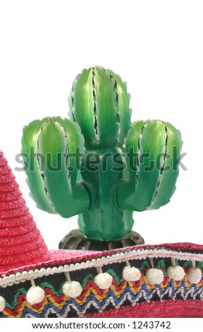 Cactus and sombrero - stock photo