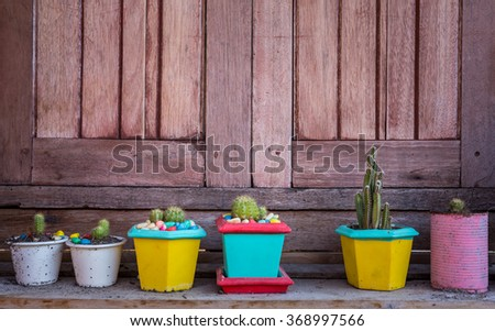 Cactus and succulents collection in small flowerpots with wooden background - stock photo