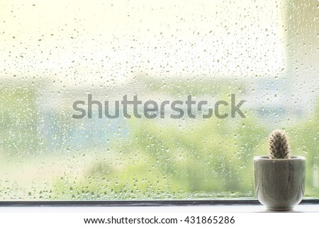Cactus behind water drops of rain on a window glass - stock photo