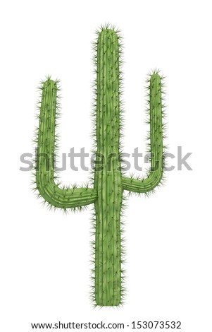 cactus on a white background - stock photo