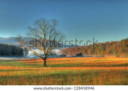 Cades Cove Tennessee early morning  Smokey Mountains - stock photo