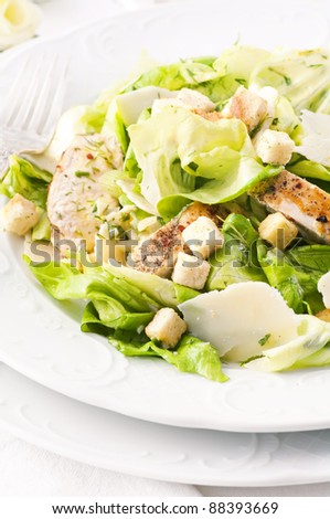 Caeser Salad with chicken and croutons - stock photo