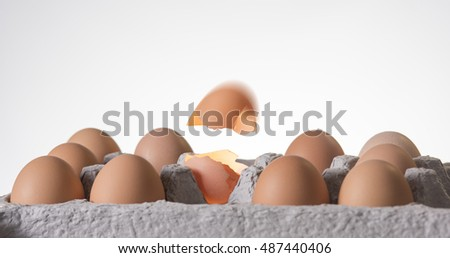 Cage Free Egg