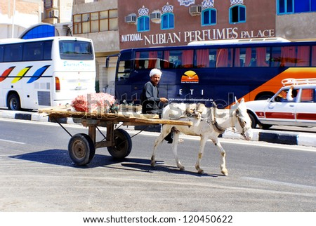 CAIRO - EGYPT NOVEMBER 19: Poor man caring merchandise in buggy pull by a donkey on november 19 2009 in Cairo Egypt. Almost 25 percent of Egypt's 85 million people live in poverty, - stock photo