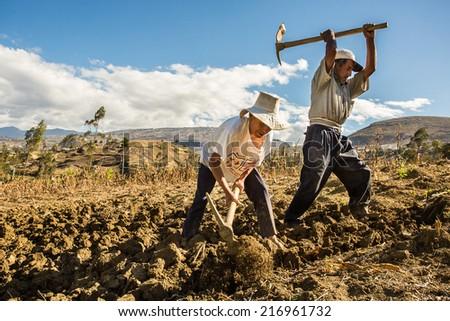 CAJAMARCA, PERU - CIRCA 2014: Two farmers work in the field circa 2014 in Cajamarca, Peru. - stock photo
