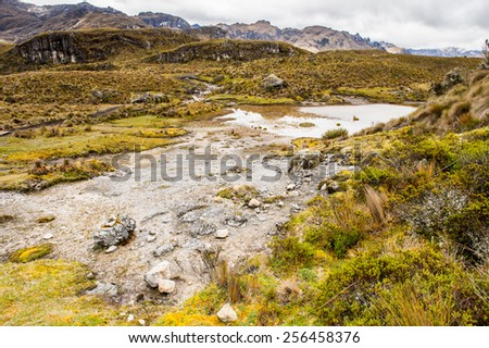 Cajas National Park, a national park in the highlands of Ecuador