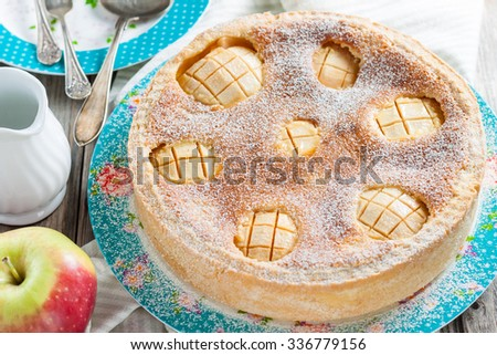 cake with apples and sour cream-egg filling - stock photo