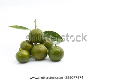 Calamansi with green leaf on isolated background