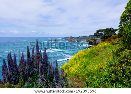 California Coast in Mendocino  - stock photo