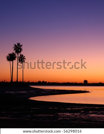 California Palm Trees and Sunset at Mission Bay San Diego, California - stock photo