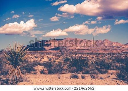 California Summer Desert Theme Vintage Color Grading. Southern California - stock photo