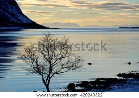calm blue fjord with mighty mountains and open sea with mountain range in the background