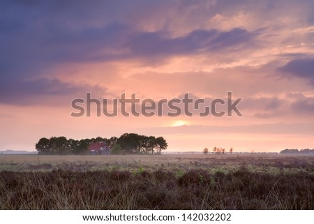calm pink sunset over home among swamps, Drenthe, Netherlands - stock photo