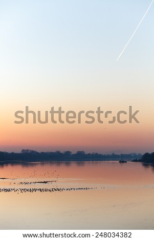 Calm river at sunset with flock of birds - stock photo