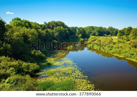 Calm river with thickets of trees and shrubs along the banks. Sunny summer day. Surface of the water with the reflection of blue sky. - stock photo