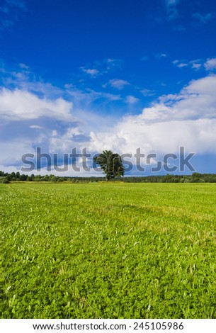 Calm Solitude Vibrant Summer  - stock photo