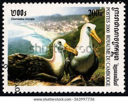 CAMBODIA - CIRCA 2000: A stamp printed in Cambodia shows albatross (diomedea irrorata), circa 2000  - stock photo