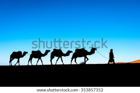 Camel caravan on the Sahara desert - stock photo