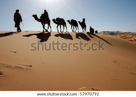 camel caravan sillhouette - stock photo