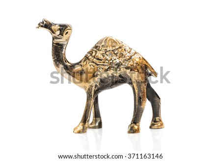 Camel gold on white background