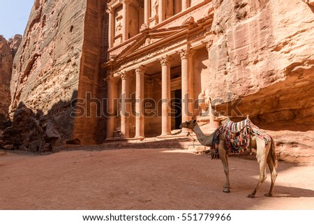 Camel in front of the world famous Treasury in Petra, Jordan