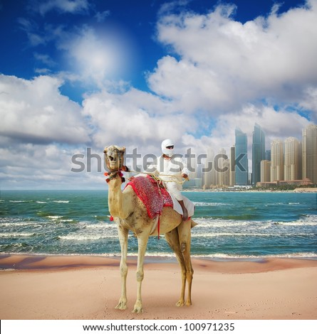 Camel on Beach in Dubai at the urban background,