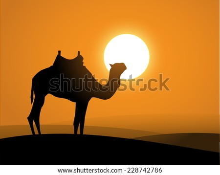 Camel  on the desert over the sunset - stock photo