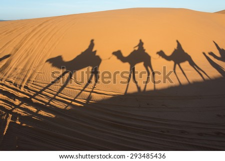 Camel shadow on the sand dune in Sahara Desert, Morocco - stock photo