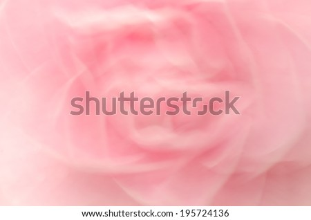 camellia blooming in the spring,abstract blur - stock photo
