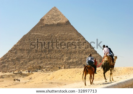 camels pass by the pyramid