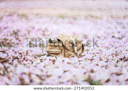 Camera bag on the blurred pink flower background - stock photo