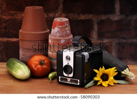 Camera with flower pots on a picture perfect set - stock photo