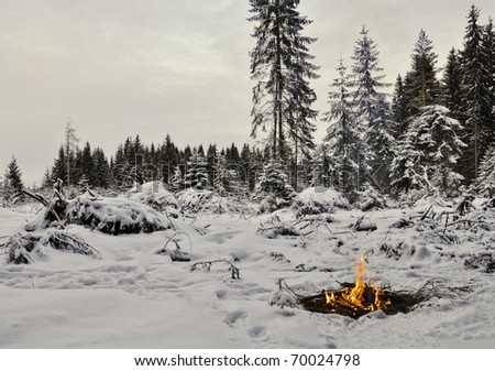 Camp and fire in the winter forest. Twilight , snow around and only fire lets survive tough time. - stock photo