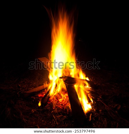 Camp fire at night/Camp fire - stock photo