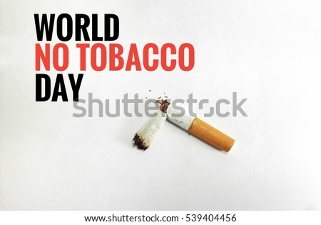 Campaign World No Tobacco Day and No Smoking Illustration Concept with broken cigarette. Great for Poster, Card And Banner.