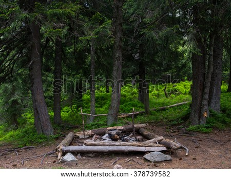 Campfire in the wood