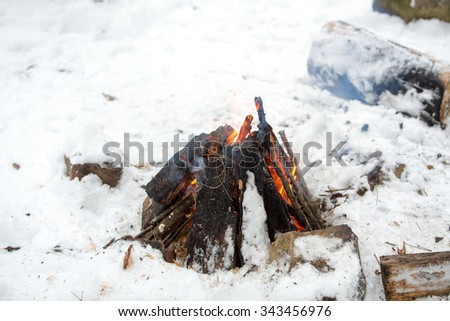 Campfire in winter forest - stock photo