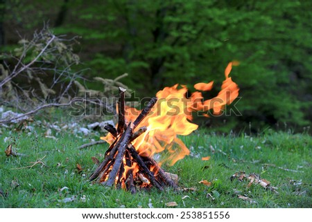Campfire on green meadow in forest - stock photo