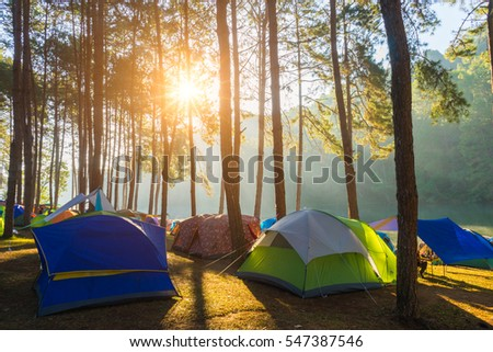 Camping and tent under the pine forest in sunrise at Pang Ung pine forest park, Pang Ung Mae Hong Son near Chiang Mai, Thailand