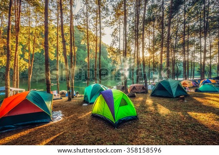 Camping and tent under the pine forest  in sunset at Pang-ung, pine forest park , Mae Hong Son, North of Thailand - stock photo