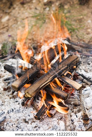 Camping bonfire with ash close-up view - stock photo