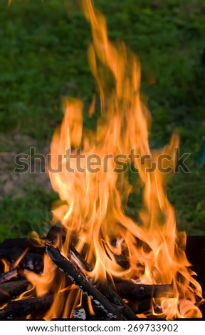 Camping bonfire with flame and firewood in dark - stock photo