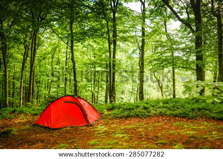 Camping in the Forest  - stock photo