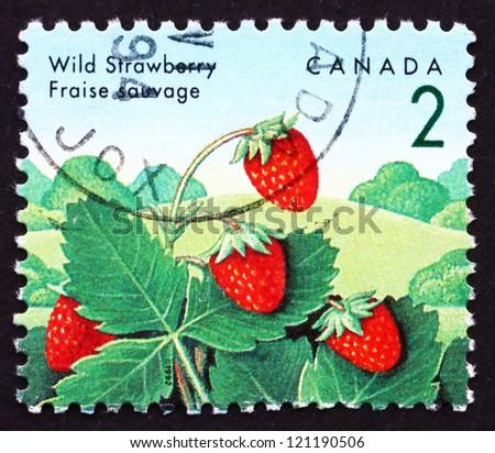 CANADA - CIRCA 1992: a stamp printed in the Canada shows Wild Strawberry, Fragaria Vesca, Plant, Fruit, circa 1992 - stock photo