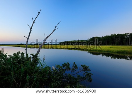 Canal or waterway glass calm at dusk with green grasses
