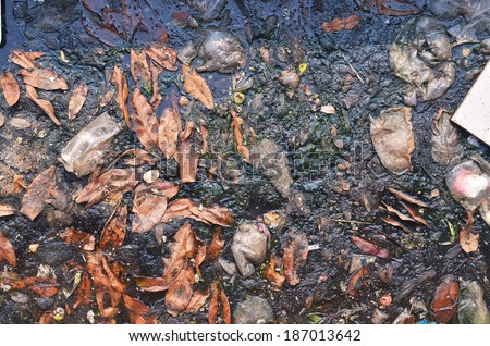 Canal Waste water , Waste water , Source wastwater , Duckweed on water, Duckweed on wastwater ,Waste surface - stock photo