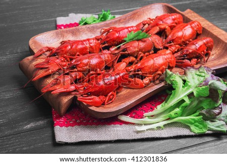 Cancers to beer, dill, boiled crawfish, beer snacks, green leaves of fresh lettuce, parsley on a wooden tray on a black dark wooden background - stock photo