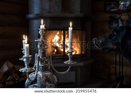 Candle, mystic dog and fireplace in the dark room - stock photo