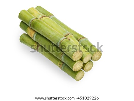 cane for fresh juice isolated on white background. This has clipping path.